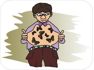 Sprichwörter - bildlich dargestellt - Sprichwort, Redewendung, Umgangssprache, bildlich, Schmetterlinge, Bauch