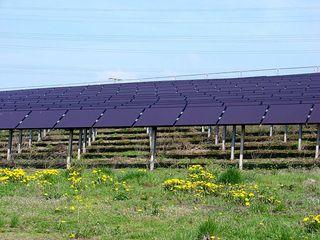Photovoltaik 1 - Photovoltaik, Solarenergie, Sonnenenergie, Umwelt, umweltfreundlich, Solarfläche, Module, Strom, Stromerzeugung, Energie, Energiegewinnung, Energieumwandlung, Strahlungsenergie, Elektrizität