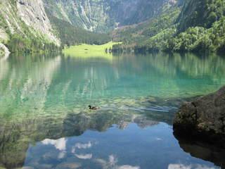 Obersee - Obersee, Berchtesgadener Land, Oberbayern, natürlich, Spiegelung, Bergsee, Alpen, Oberbayern