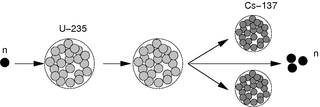 Spaltung von Uran - Physik, Radioaktivität, Atomphysik, Spaltung, Uran, Kernspaltung, spalten