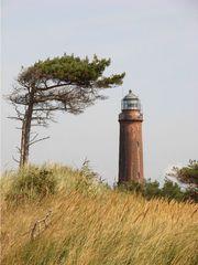 Leuchtturm und Windflüchter - Leuchtturm, Licht, Signal, Leuchtfeuer, lotsen, Schifffahrt, Windflüchter, Windrichtung, Wuchs