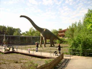 Brachiosaurus - Brachiosaurus, Saurier, Erdgeschichte