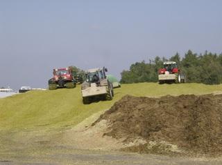 Biogasanlage #2 - Fahrsilo, Raupen, silagieren, Biomasse, Biogasanlage, Druck, pressen
