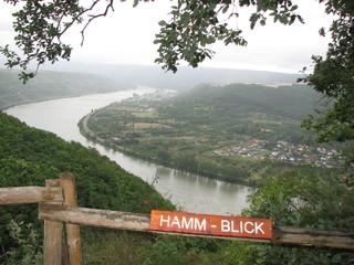 Hamm-Blick - Mittelrhein, Flussbiegung, Hamm, Rhein