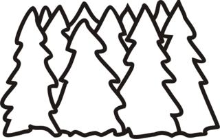 Wald - Wald, Baum, Bäume, Tanne, Fichte, Anlaut W