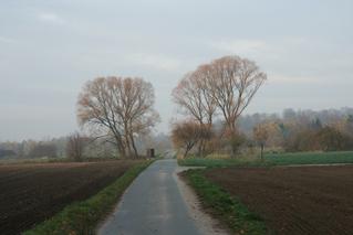 Novembertag - Spätherbst, Herbst, November, Laub, Weg, Furchen, Schreibanlass, Meditation