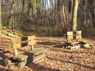 Herbstimpressionen - Herbst, Rundweg, Wanderweg, Holzbänke, Ausruhen, Einsamkeit, Meditation, Herbstlaub, kahle Bäume, Naturerlebnis