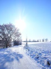 Winterlandschaft  #3 - Winterlandschaft, Winter, Schnee, kahle Bäume, Sonne, Schneelandschaft, Kälte, Einsamkeit, Ruhe, Stille, Schreibanlass, Meditation