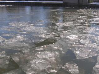 Vereister Mittellandkanal #1 - Eis, Winter, Eisschollen, kalt, Kanal, Schifffahrt, Verkehr, Wasser, Schnee, Transport, Eisbrecher, Anomalie, Dichte, Physik, Aggregatzustand