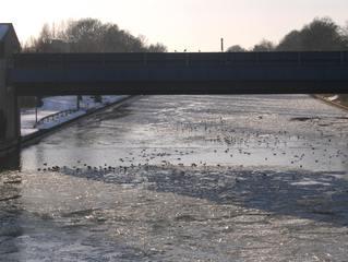 Vereister Mittellandkanal #3 - Eis, Winter, Eisschollen, kalt, Kanal, Schifffahrt, Verkehr, Wasser, Schnee, Transport, Eisbrecher, Sperrtor, eisfrei, vereist, offen, Möwen, Enten
