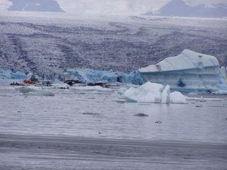 Gletschersee - Gletscher, See, Eis, Island, Abbruch, kalt, Eisformation, exogene Kräfte