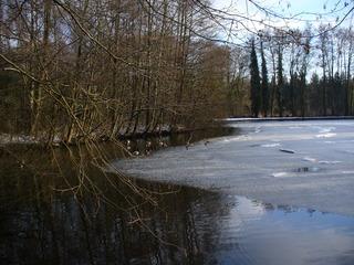 Winter ade 2 - Winter, Eis, Schneereste, See, Eis, Wasser kahle Bäume, Wasserspiegelung, blauer Himmel, Enten