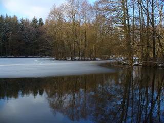 Winter ade 1 - Winter, See, Wasser, Eis, blauer Himmel, Bäume, Wasserspiegelung, tauen