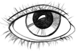 Auge  - Auge, Grundwortschatz, Nomen, Wimper, Pupille, Iris, Lid, Oculus, Sinnesorgan, sehen, eye, see, look, Anlaut Au