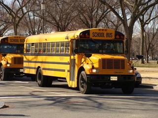 School bus - Schulbus, school bus, USA, Amerika, gelb, Beförderungsmittel, Schüler