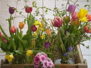 Frühlingsbouqet - Tulpen, Frühling, Blumen, bunt, Tulpen, Narzissen, Osterglocke, Primel