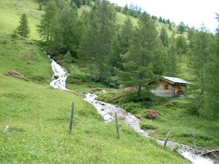 Almhütte - Alm, Almhütte, Wildbach, Steiermark, Österreich, Wiese, Tannen, Bäume, Lärche, Bach
