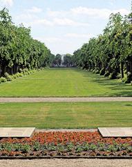 Rechts stehn Bäume, links stehn Bäume... - Rasen, Baum, Bäume, Allee, Linden, Symmetrie, symmetrisch, Fluchtpunkt, Sonne, Schatten, Blume, Beet, Weg
