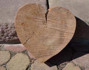 Herz aus Holz - Herz, Baumscheibe, Symbol, Leben, Liebe, Verständnis, Vertrauen, Güte, Mitgefühl, Miteinander, Dekoration, Sägearbeit, Laubsägearbeit, Laubsägen, basteln, Jahresring, Kambium, Dichte, Querschnitt, Schnittfläche, Dichteschwankung, Vegetationsperiode