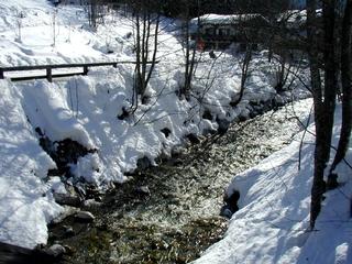 Winter - Bach - Winter, Schnee, Bach, kalt, Bäume, Flussbett
