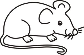 Maus - Maus, Feldmaus, Hausmaus, Mäuse, Anlaut M, Illustration, Wörter mit au