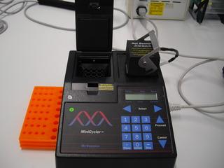 minicycler - Minicyler, Thermocycler, Heizelement, PCR, DNA, Vervielfachung, geringe DNA-Spuren, genetischer Fingerabdruck, Typisierungen