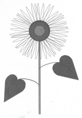 Sonnenblume - Sonnenblume, Blume, Spätsommer, Herbst, Korbblütler, Blüte, Stiel, Blätter, Illustration