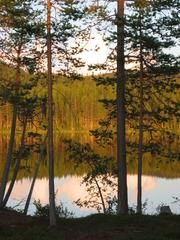 Spiegelung 1 - See, Wasser, Wald, Spiegelung, spiegeln, Schreibanlass