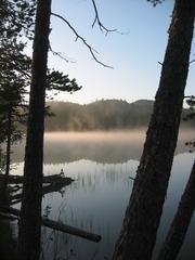 See - See, Wasser, Wald, Spiegelung, spiegeln, Schreibanlass, Physik, Nebel, neblig, Lichtverhältnisse