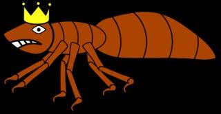 Ameisenkönigin #4 - Ameise, Insekt, Hautflügler, Ameisenkönigin