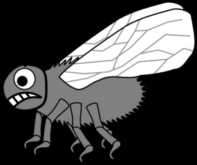 Fliege #2 - Fliege, Zweiflügler, Insekt, Sechsfüßer