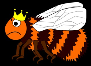 Hummelkönigin #3 - Hummel, Hautflügler, Insekt, Stechimme, Hummelkönigin