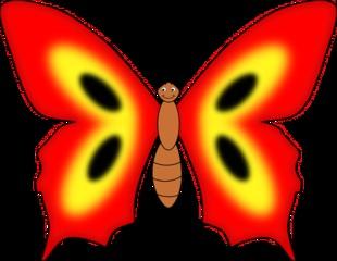 Schmetterling - Schmetterling, Falter, Flügel, Anlaut S, Anlaut Sch, Insekt, rot
