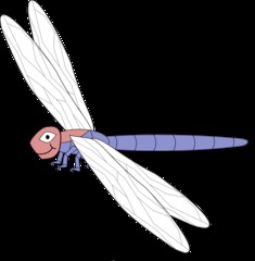 Libelle #1 - Libelle, Insekt, Fluginsekt, Anlaut L