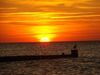 Sonnenuntergang #2 - Sonne, Sonnenuntergang, Küste, Meer, Ostsee, Wasser, Wellen, Abend, Nacht, Meditation, Erzählanlass, Kalenderbild, kitschig, beruhigend, Bune, Landbefestigung, Schreibanlass, Vogel