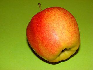 Apfel - Apfel, Anlaut A, Obst, Frucht, Royal Gala, rot, süß, Kernobst, Rosengewächs, Stiel, eins