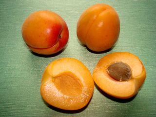 Aprikosen - Aprikose, Anlaut A, Obst, Marille, Rosengewächs, zweikeimblättrig, Kern, Frucht, süß, gelb, Stein, Samen, Hälfte, halbieren