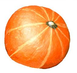 Kürbis - Kürbis, Gemüse, Lebensmittel, orange, rund