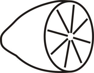 Zitrone - Zitrone, Einzahl, Obst, Frucht, sauer, Anlaut Z