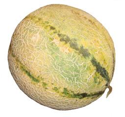 Melone #1 - Melone, Zuckermelone, Cantaloupe, süß, gelb, orange, Fruchtfleisch, Kerne, Schale, Gemüse, Frucht, Lebensmittel