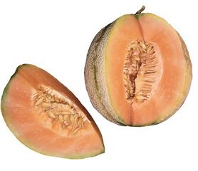 Melone #2 - Melone, Zuckermelone, Cantaloupe, süß, gelb, orange, Fruchtfleisch, Kerne, Schale, Gemüse, Frucht, Lebensmittel