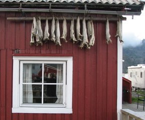 Stockfischaufbewahrung außen an einem norwegischen Haus - Stockfisch, Aufbewahrung, Konservierung, Norwegen, Lebensmittel, Haltbarmachung, trocknen, Trocknung, Entwässern, Trockenfisch