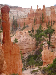 Bryce Canyon #5 - Wüste, Felsnadel, Hoodoo, Nationalpark, Naturwunder, Utah, Sandstein, Kalk, Basalt, Geologie, Gestein, Felsen, USA, Landschaft, Südwesten, Colorado-Plateau, Eisenoxid, Manganoxid, Wüstenklima, Erosion, Sediment, Farbenspiel, Formenspiel