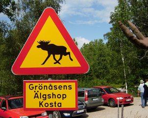 Elchschild - Elch, Schweden, Verkehrsschild, Warnschild, Elch