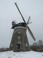 Holländerwindmühle - Windmühle, Holländerwindmühle, mahlen, Müller, Mühle, Windkraft, Flügel, Mehl, Getreide