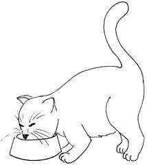 Katze am Futternapf - Katze, Kätzchen, Haustier, fressen, Futter, Anlaut K, Illustration