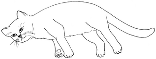 gelangweilte Katze - Katze, Kätzchen, Haustier, Langeweile, Anlaut K, Illustration