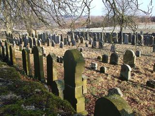jüdischer Friedhof - Judentum, Juden, Religion, Grab, Grabstein, Begräbnis, Friedhof