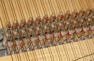 Cembalo - Mechanik - Cembalo, Saiteninstrument, Zupfinstrument, Kiel