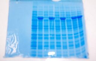 Acrylamidgel - Acrylamidgel, Molekularbiologie, Elektrophorese, Trennung, Analyse, Analytik